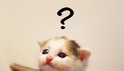 ペットの犬や猫に新型コロナウイルスは感染するのか?飼い主の心配の声