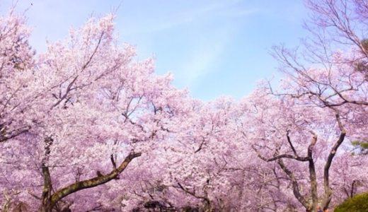 大阪府がGWまで学校の休校延長を発表!新型コロナ感染拡大防止の休みはいつまで続くのか?